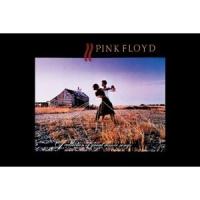 Магнит Pink Floyd - Dancers